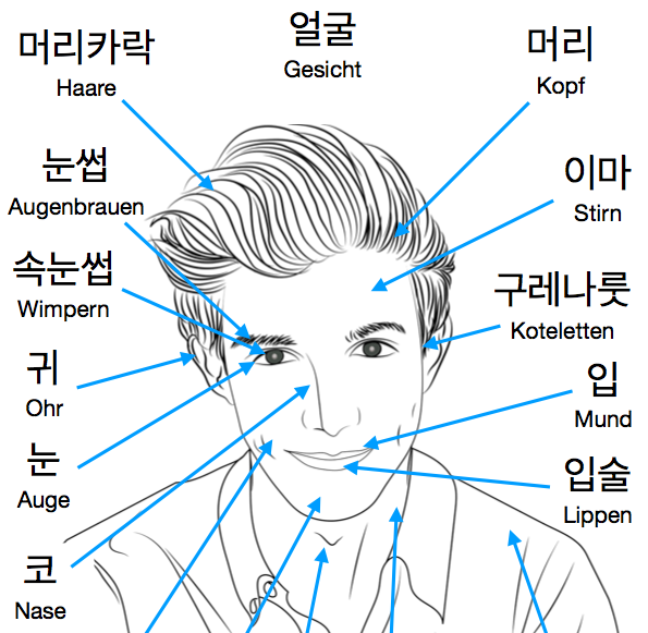 Koreanische Lernkarten