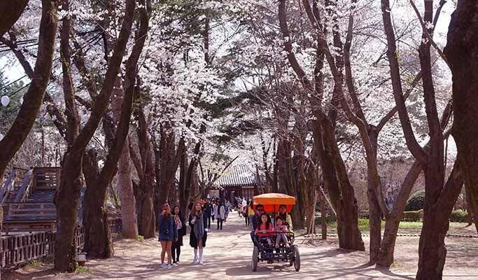 Südkorea Reise